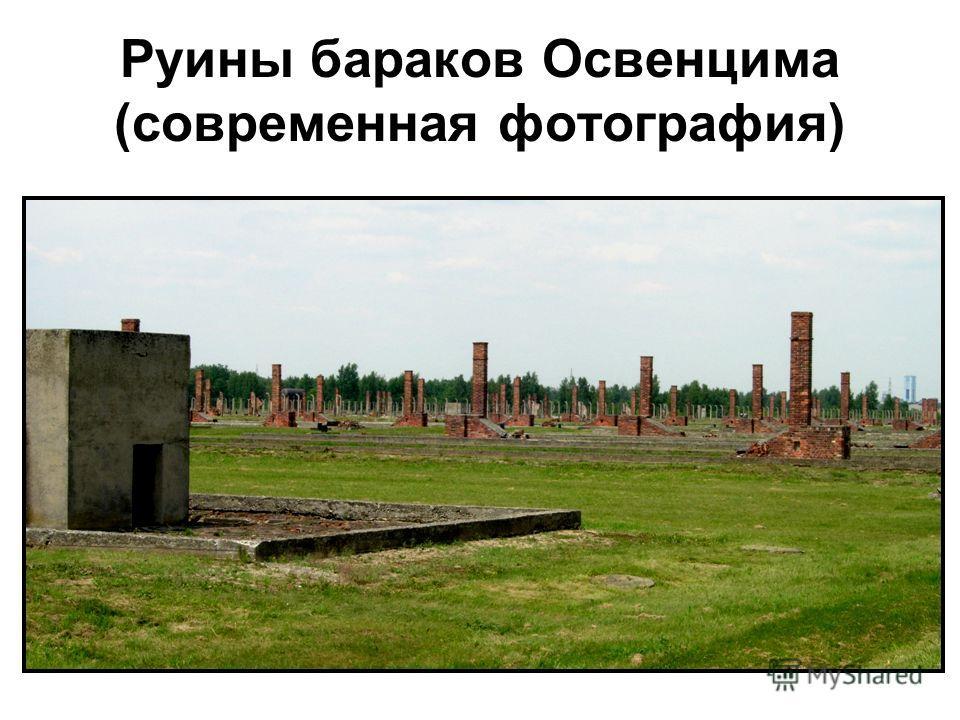 Руины бараков Освенцима (современная фотография)