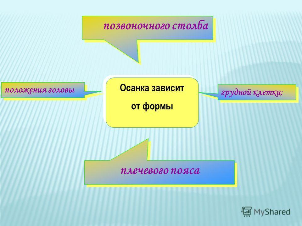 Осанка зависит от формы Осанка зависит от формы грудной клетки ; грудной клетки ; положения головы положения головы плечевого пояса плечевого пояса позвоночного столба позвоночного столба