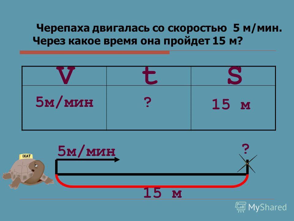 Черепаха двигалась со скоростью 5 м/мин. Через какое время она пройдет 15 м? SVt 5м/мин? 15 м 5м/мин ? 15 м