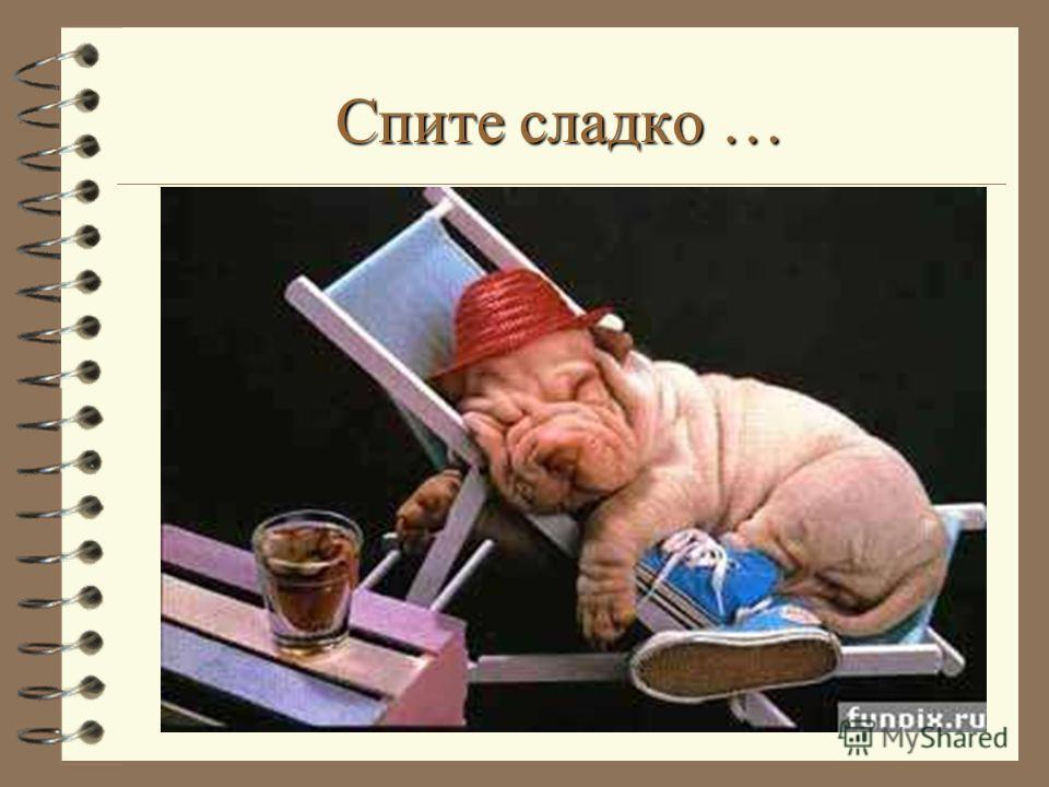 Спите сладко …