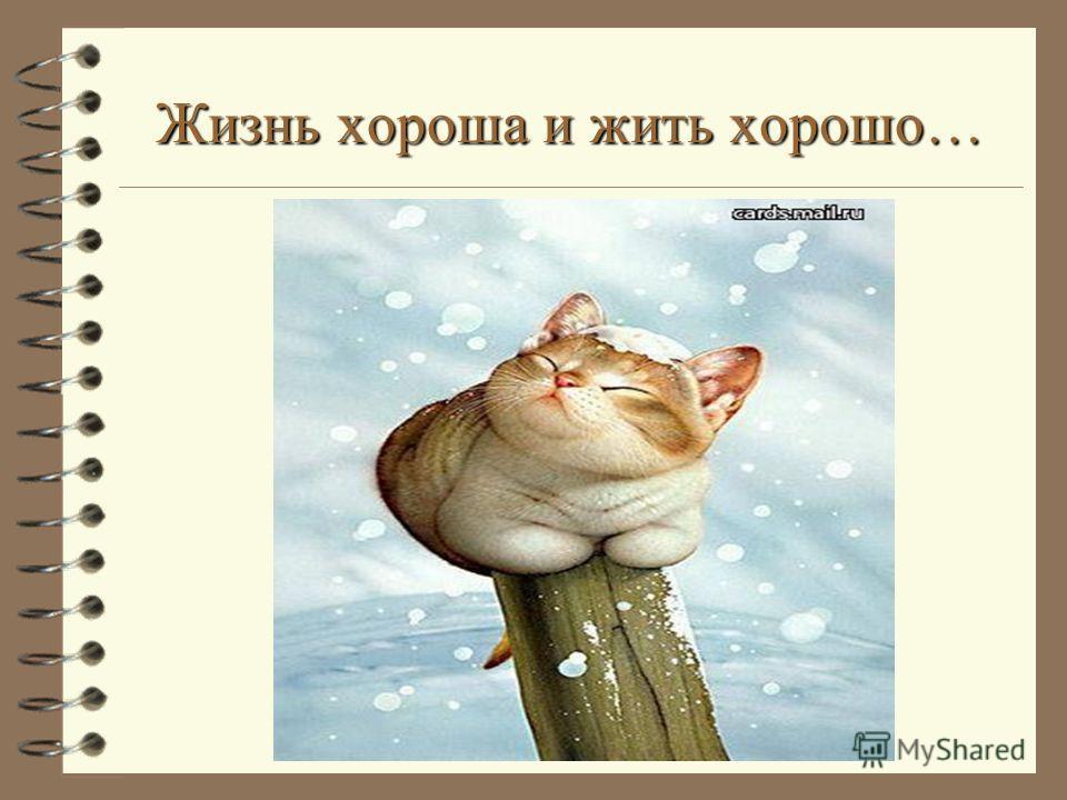 Жизнь хороша и жить хорошо…