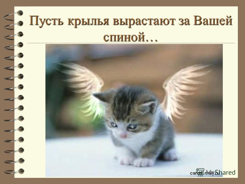 Пусть крылья вырастают за Вашей спиной…