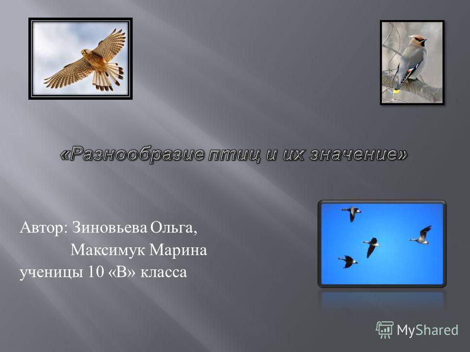 Автор : Зиновьева Ольга, Максимук Марина ученицы 10 « В » класса