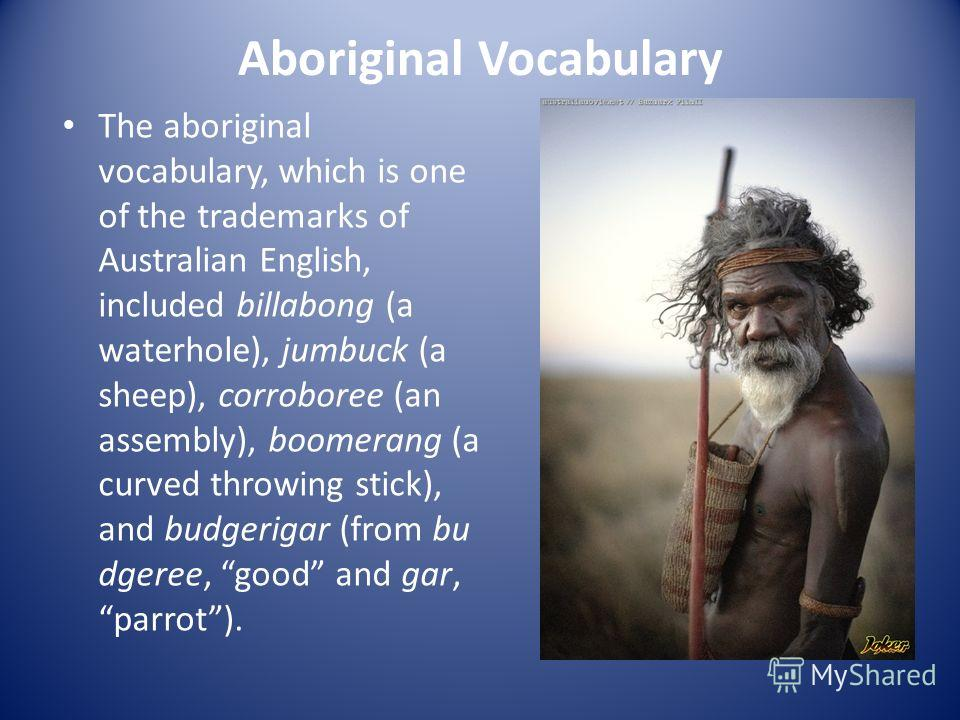Aboriginal Vocabulary The aboriginal vocabulary, which is one of the trademarks of Australian English, included billabong (a waterhole), jumbuck (a sheep), corroboree (an assembly), boomerang (a curved throwing stick), and budgerigar (from bu dgeree,