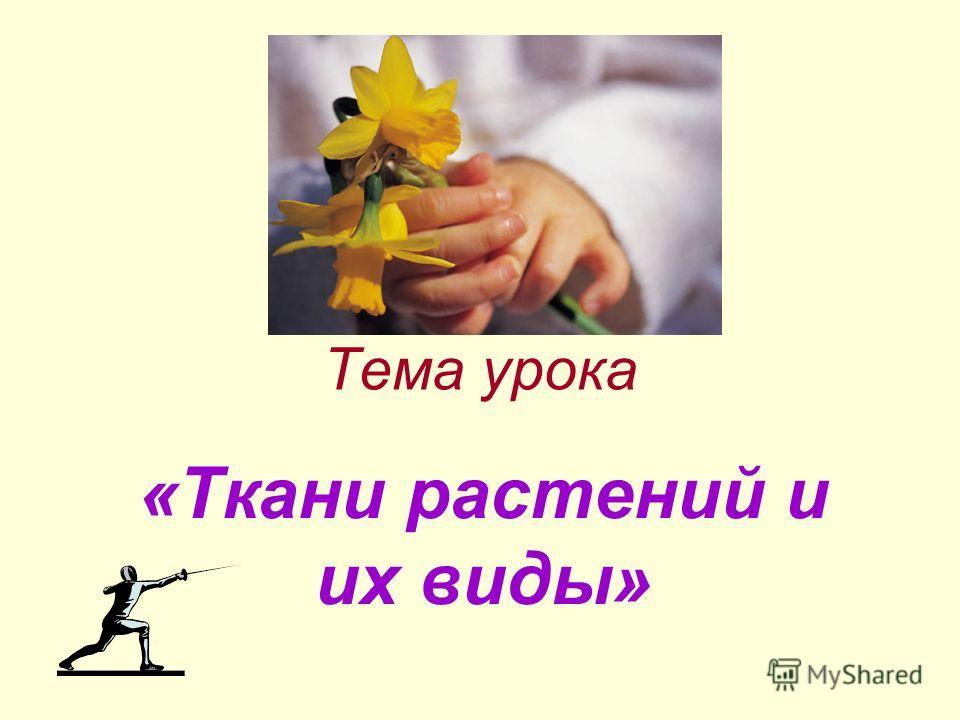 Тема урока «Ткани растений и их виды»