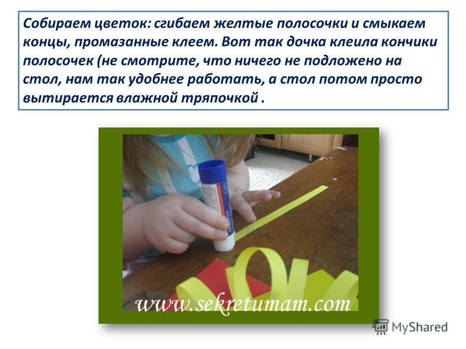 Собираем цветок: сгибаем желтые полосочки и смыкаем концы, промазанные клеем. Вот так дочка клеила кончики полосочек (не смотрите, что ничего не подложено на стол, нам так удобнее работать, а стол потом просто вытирается влажной тряпочкой.