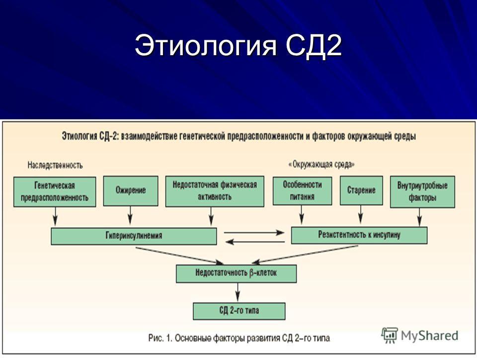 Этиология СД2