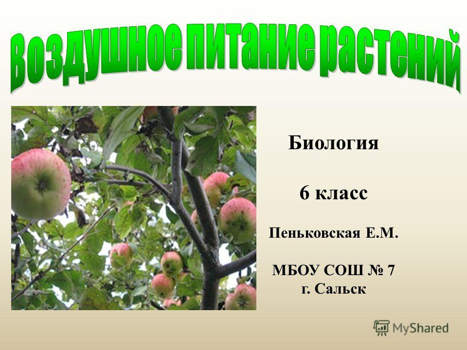 Биология 6 класс Пеньковская Е.М. МБОУ СОШ 7 г. Сальск