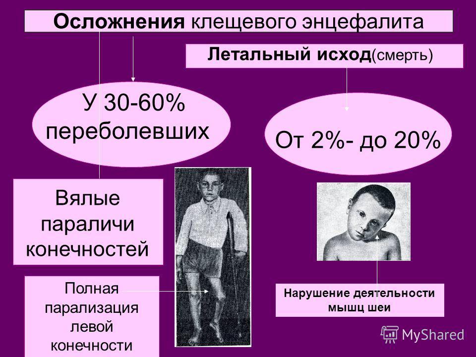 Осложнения клещевого энцефалита У 30-60% переболевших От 2%- до 20% Летальный исход (смерть) Вялые параличи конечностей Полная парализация левой конечности Нарушение деятельности мышц шеи