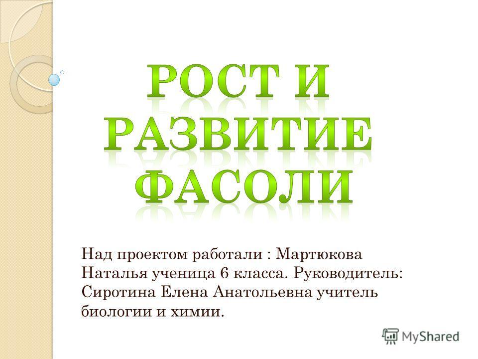 Над проектом работали : Мартюкова Наталья ученица 6 класса. Руководитель: Сиротина Елена Анатольевна учитель биологии и химии.