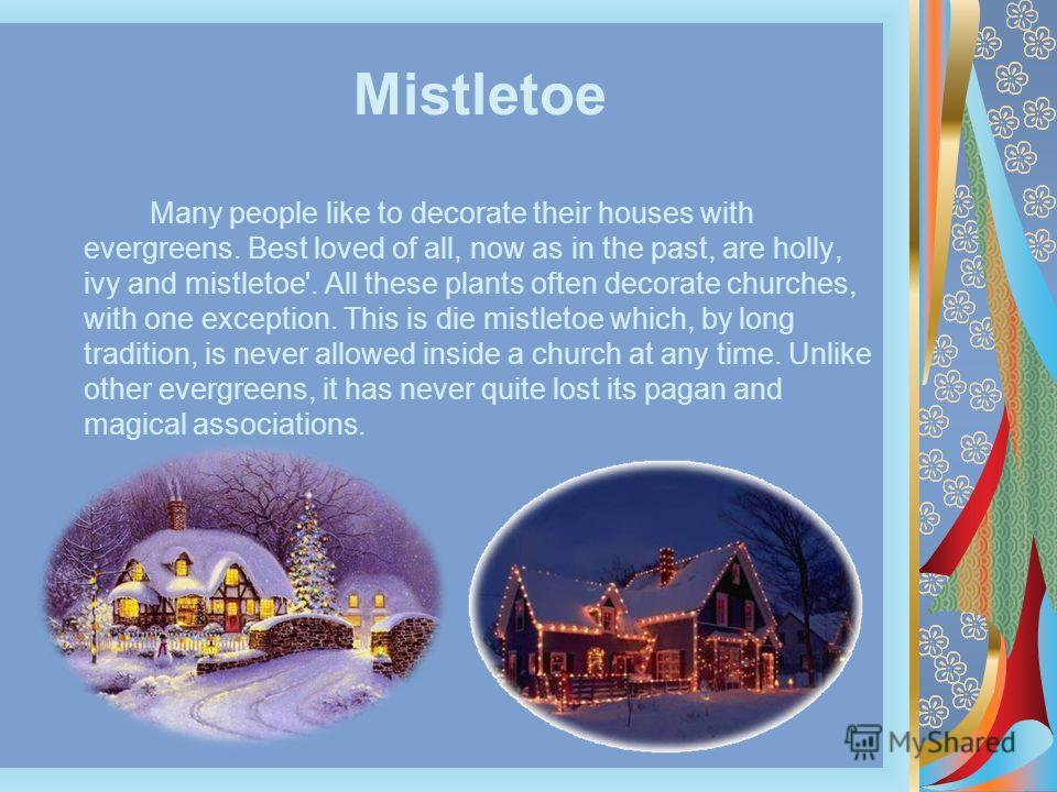 Mistletoe Many people like to decorate their houses with evergreens. Best loved of all, now as in the past, are holly, ivy and mistletoe'. All these plants often decorate churches, with one exception. This is die mistletoe which, by long tradition, i