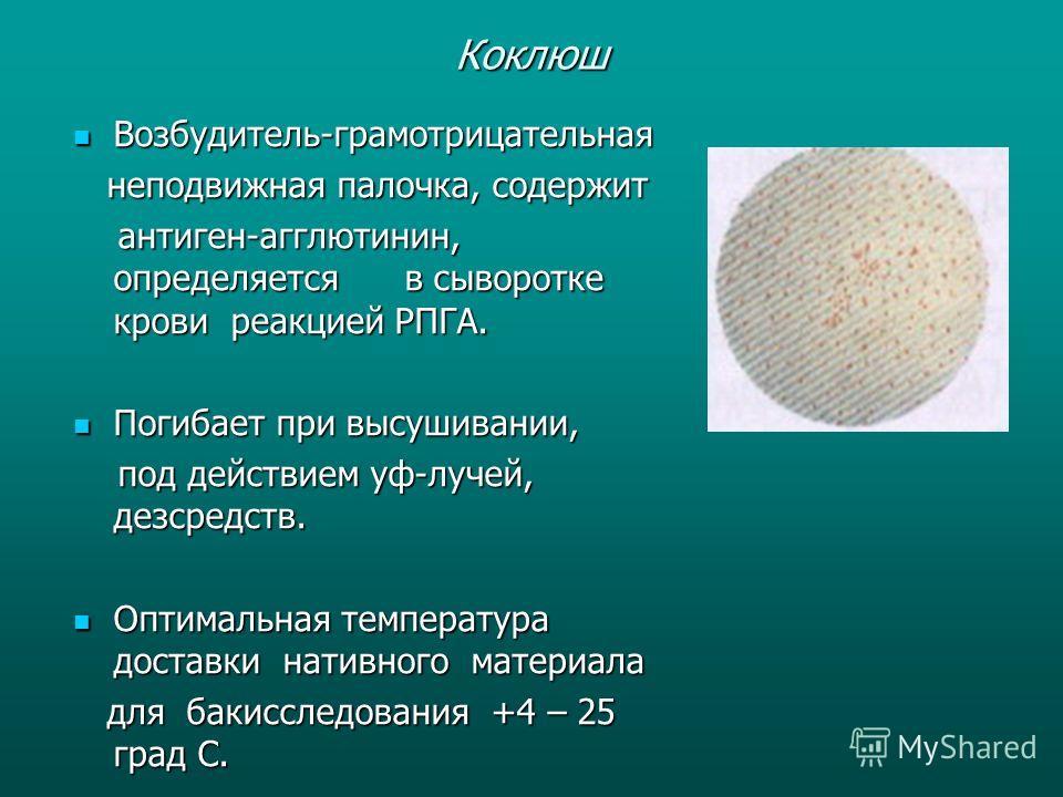 Коклюш Возбудитель-грамотрицательная Возбудитель-грамотрицательная неподвижная палочка, содержит неподвижная палочка, содержит антиген-агглютинин, определяется в сыворотке крови реакцией РПГА. антиген-агглютинин, определяется в сыворотке крови реакци