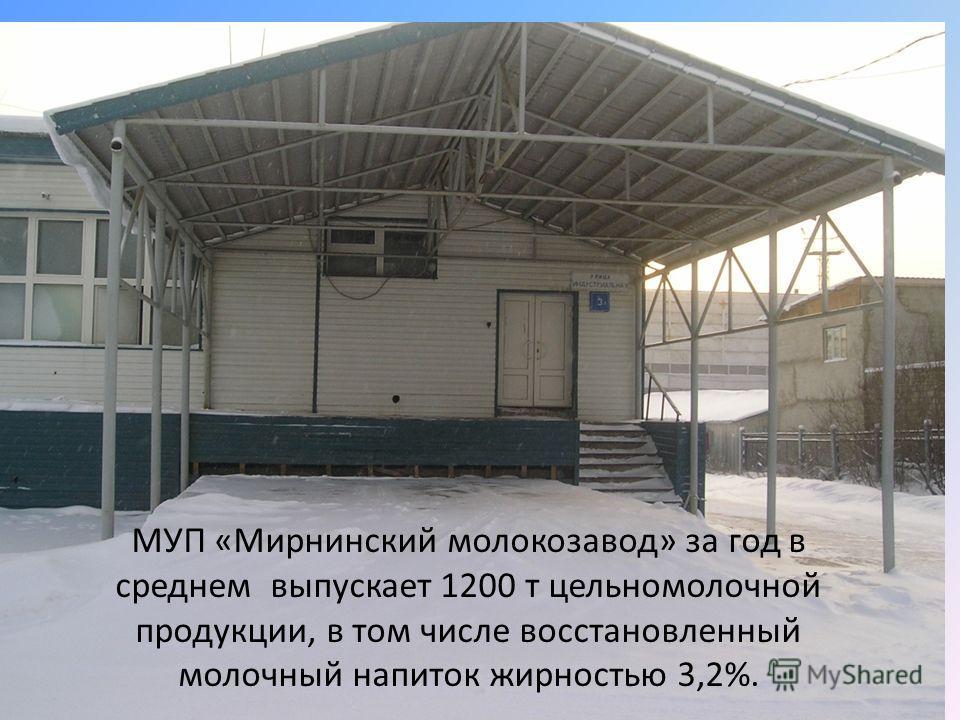 МУП «Мирнинский молокозавод» за год в среднем выпускает 1200 т цельномолочной продукции, в том числе восстановленный молочный напиток жирностью 3,2%.