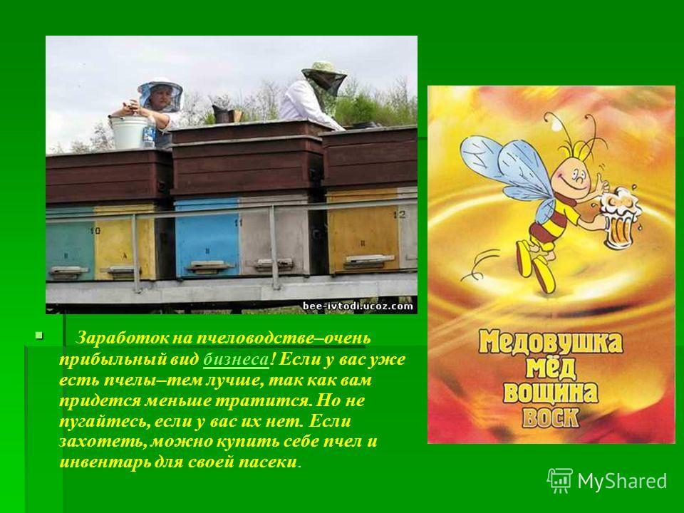 Заработок на пчеловодстве–очень прибыльный вид бизнеса! Если у вас уже есть пчелы–тем лучше, так как вам придется меньше тратится. Но не пугайтесь, если у вас их нет. Если захотеть, можно купить себе пчел и инвентарь для своей пасеки.бизнеса