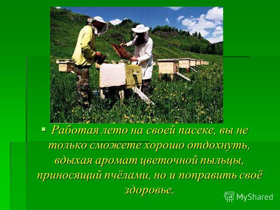 Работая лето на своей пасеке, вы не только сможете хорошо отдохнуть, вдыхая аромат цветочной пыльцы, приносящий пчёлами, но и поправить своё здоровье. Работая лето на своей пасеке, вы не только сможете хорошо отдохнуть, вдыхая аромат цветочной пыльцы
