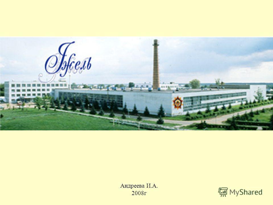 Андреева И.А. 2008г