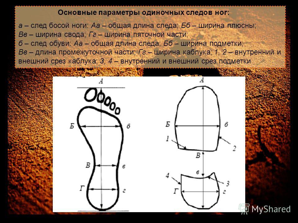 Основные параметры одиночных следов ног: а – след босой ноги: Аа – общая длина следа; Бб – ширина плюсны; Вв – ширина свода; Гг – ширина пяточной части; б – след обуви: Аа – общая длина следа; Бб – ширина подметки; Вв – длина промежуточной части; Гг