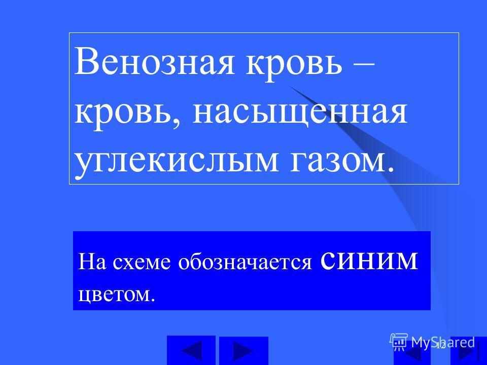 12 Венозная кровь – кровь, насыщенная углекислым газом. На схеме обозначается синим цветом.