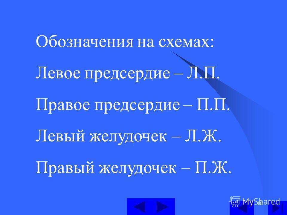 16 Обозначения на схемах: Левое предсердие – Л.П. Правое предсердие – П.П. Левый желудочек – Л.Ж. Правый желудочек – П.Ж.