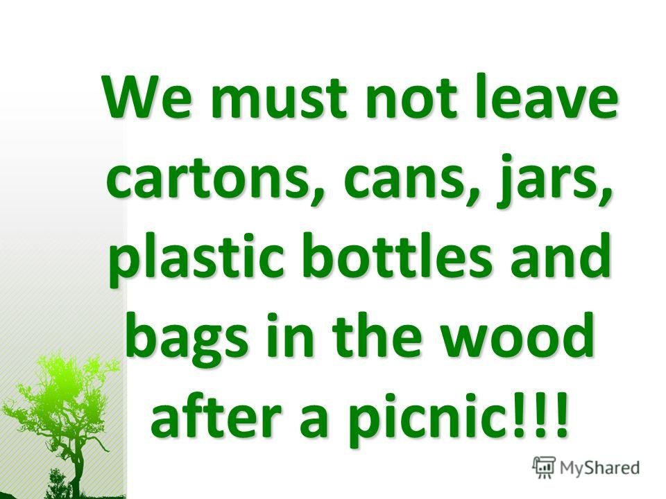 We must not leave cartons, cans, jars, plastic bottles and bags in the wood after a picnic!!!
