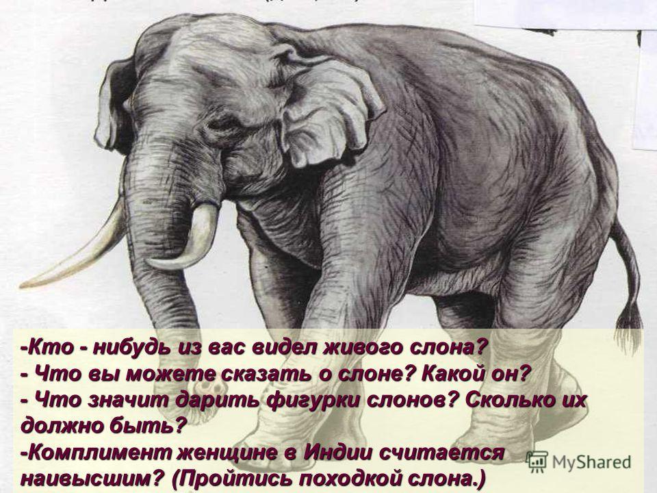 -Кто - нибудь из вас видел живого слона? - Что вы можете сказать о слоне? Какой он? - Что значит дарить фигурки слонов? Сколько их должно быть? -Комплимент женщине в Индии считается наивысшим? (Пройтись походкой слона.)
