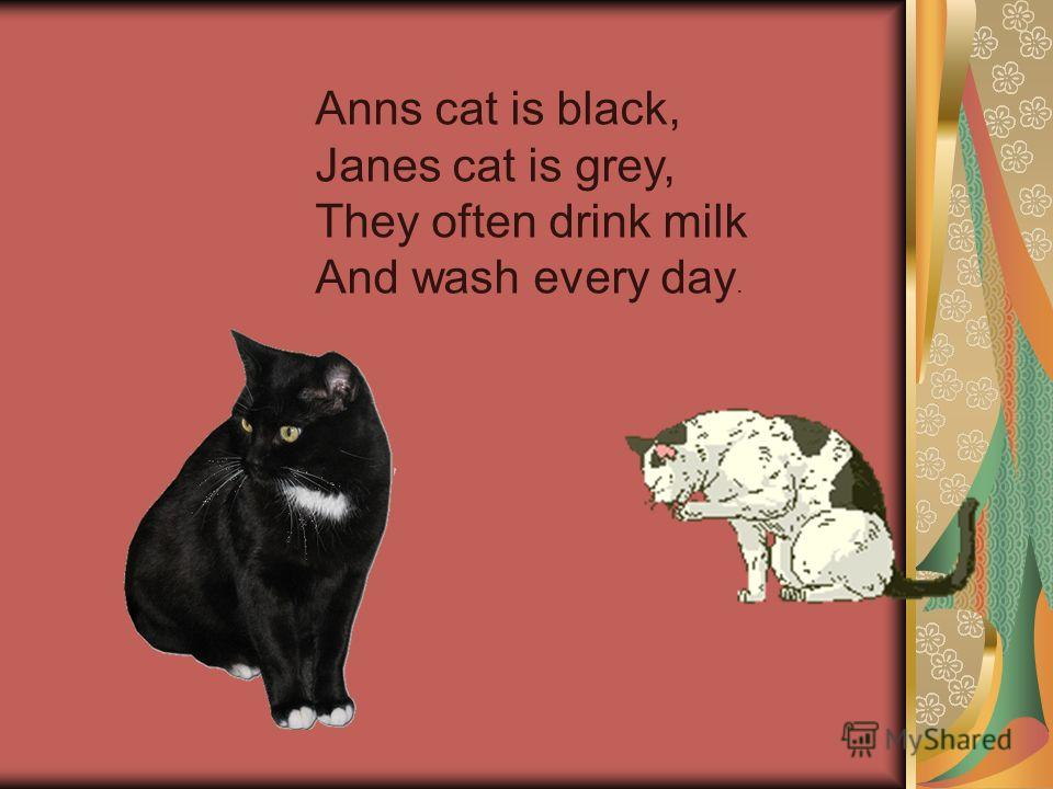 Anns cat is black, Janes cat is grey, They often drink milk And wash every day.