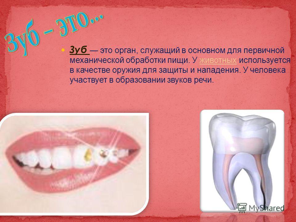 Зуб это орган, служащий в основном для первичной механической обработки пищи. У животных используется в качестве оружия для защиты и нападения. У человека участвует в образовании звуков речи.животных