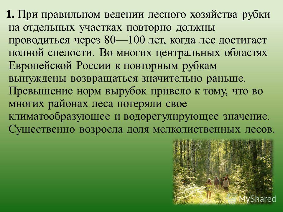 1. При правильном ведении лесного хозяйства рубки на отдельных участках повторно должны проводиться через 80100 лет, когда лес достигает полной спелости. Во многих центральных областях Европейской России к повторным рубкам вынуждены возвращаться знач