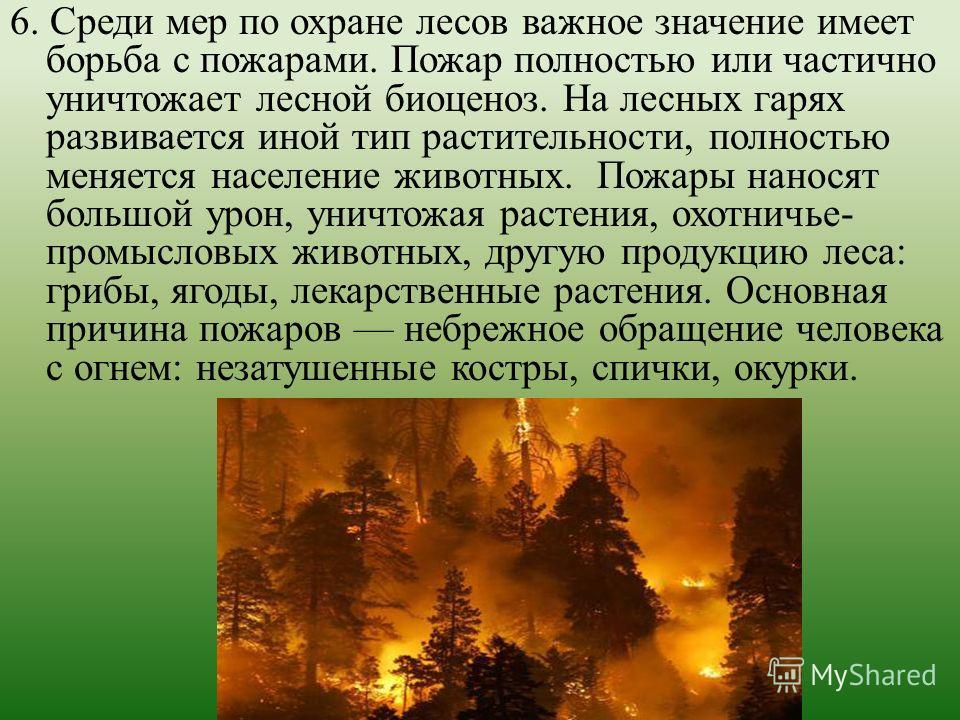 6. Среди мер по охране лесов важное значение имеет борьба с пожарами. Пожар полностью или частично уничтожает лесной биоценоз. На лесных гарях развивается иной тип растительности, полностью меняется население животных. Пожары наносят большой урон, ун
