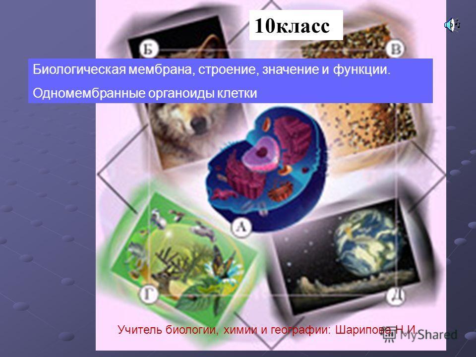 10класс Биологическая мембрана, строение, значение и функции. Одномембранные органоиды клетки Учитель биологии, химии и географии: Шарипова Н.И.