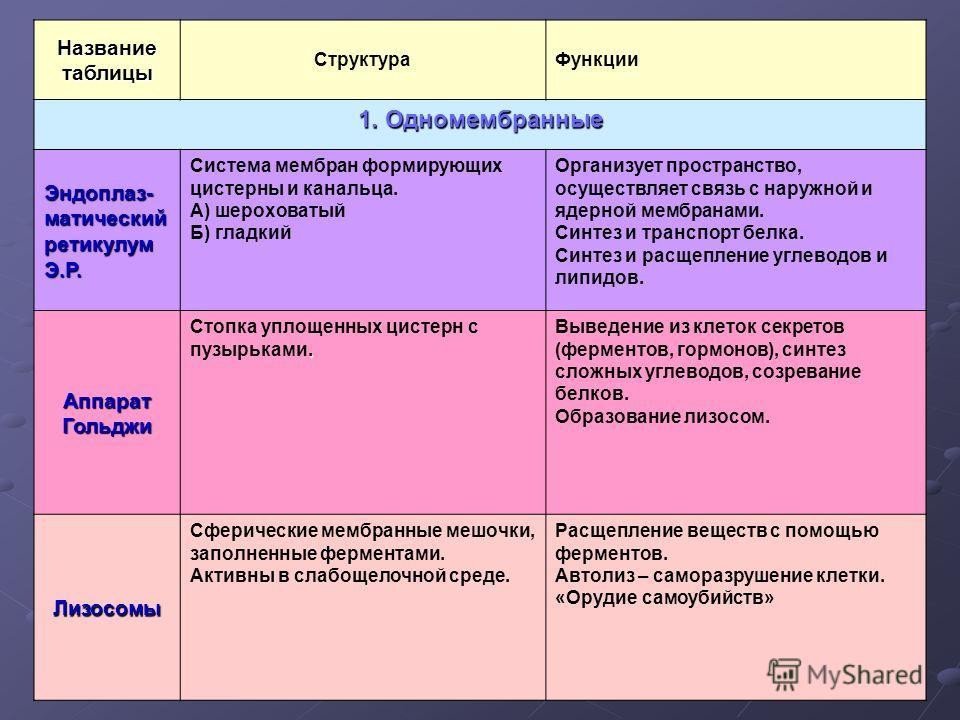 Название таблицы СтруктураФункции 1. Одномембранные Эндоплаз-матическийретикулумЭ.Р. Система мембран формирующих цистерны и канальца. А) шероховатый Б) гладкий Организует пространство, осуществляет связь с наружной и ядерной мембранами. Синтез и тран