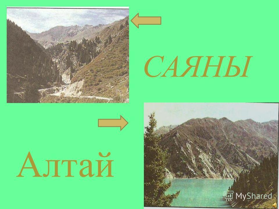 САЯНЫ Алтай