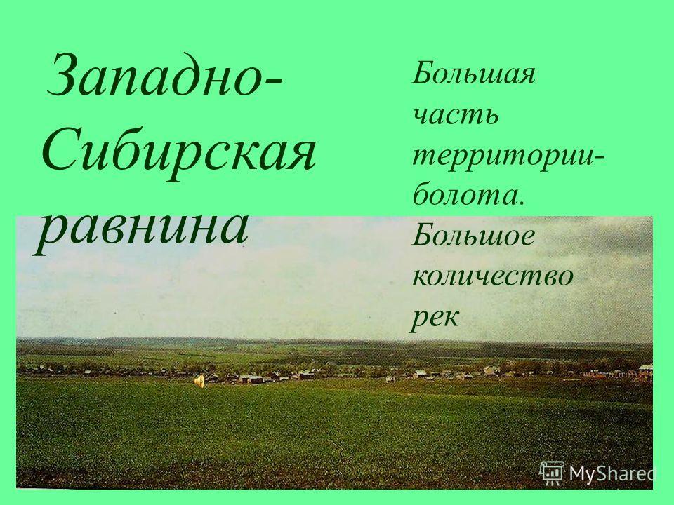 Западно- Сибирская равнина Большая часть территории- болота. Большое количество рек