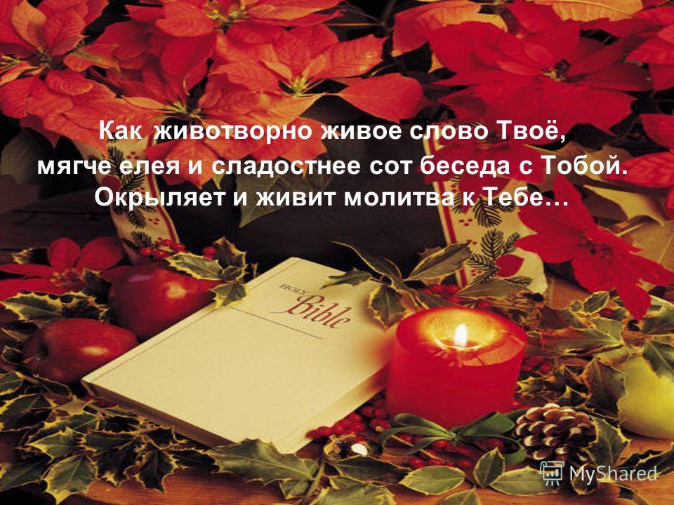 Как животворно живое слово Твоё, мягче елея и сладостнее сот беседа с Тобой. Окрыляет и живит молитва к Тебе…