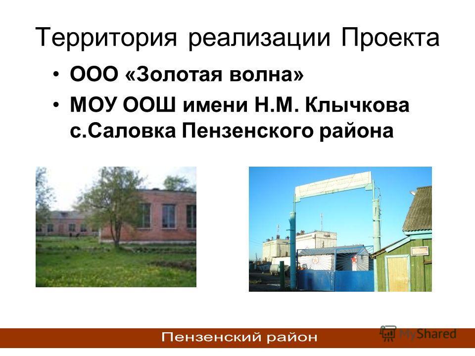Территория реализации Проекта ООО «Золотая волна» МОУ ООШ имени Н.М. Клычкова с.Саловка Пензенского района