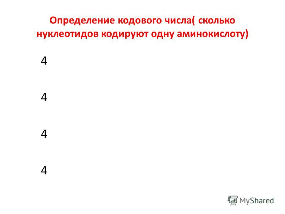 Определение кодового числа( сколько нуклеотидов кодируют одну аминокислоту) 4 4 4