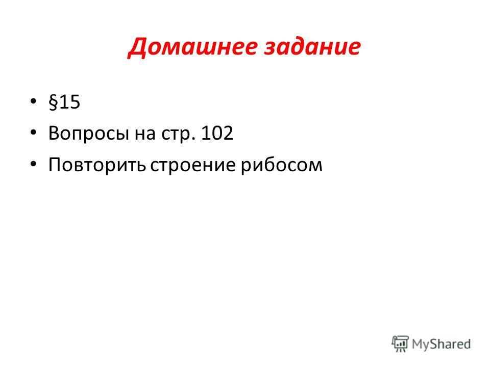 Домашнее задание §15 Вопросы на стр. 102 Повторить строение рибосом