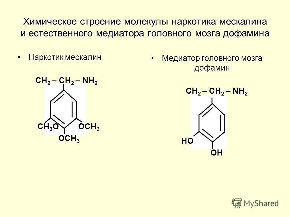 Химическое строение молекулы наркотика мескалина и естественного медиатора головного мозга дофамина Наркотик мескалин СН 2 – СН 2 – NН 2 СН 3 О ОСН 3 СН 3 О ОСН 3 ОСН 3 ОСН 3 Медиатор головного мозга дофамин СН 2 – СН 2 – NН 2 СН 2 – СН 2 – NН 2 НО Н