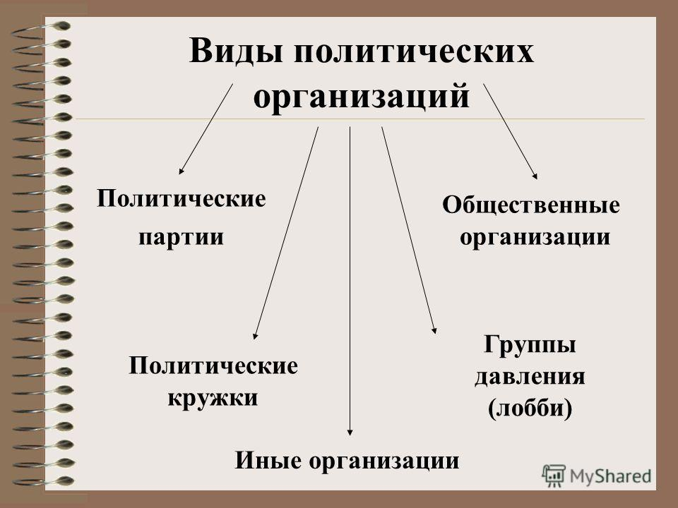 Виды политических организаций Политические партии Общественные организации Иные организации Политические кружки Группы давления (лобби)