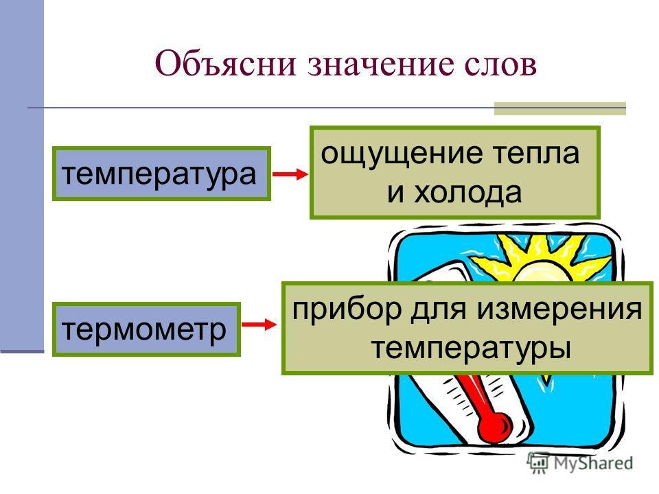 Объясни значение слов термометр температура прибор для измерения температуры ощущение тепла и холода
