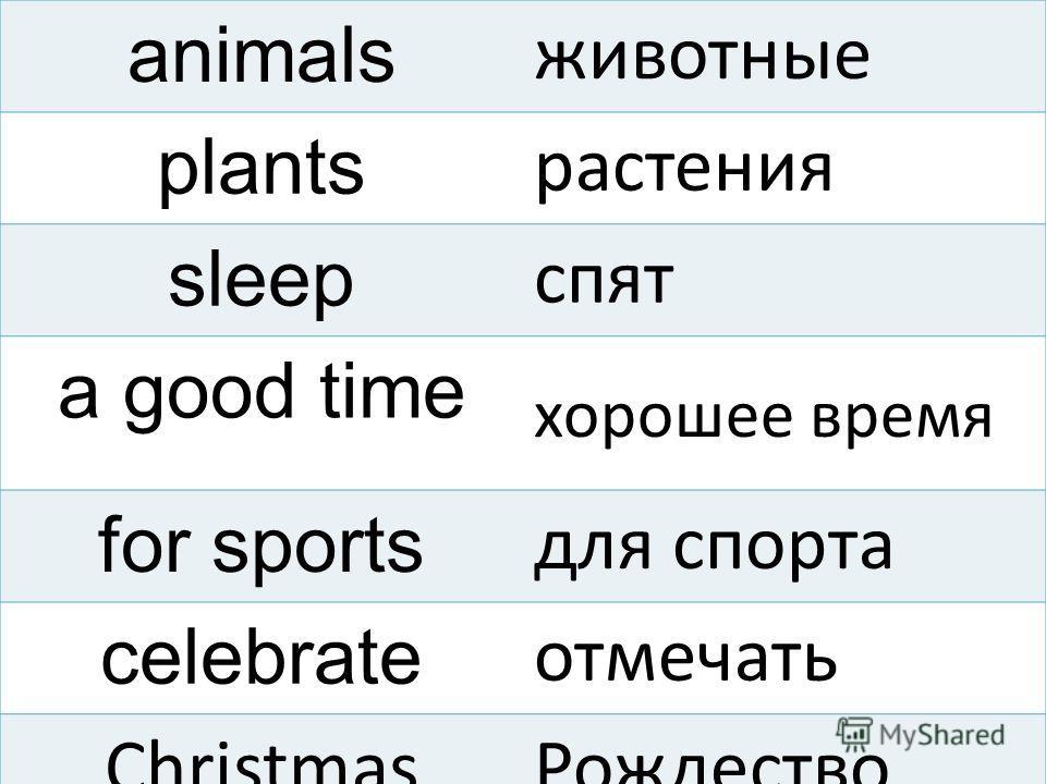 animals животные plants растения sleep спят a good time хорошее время for sports для спорта celebrate отмечать ChristmasРождество