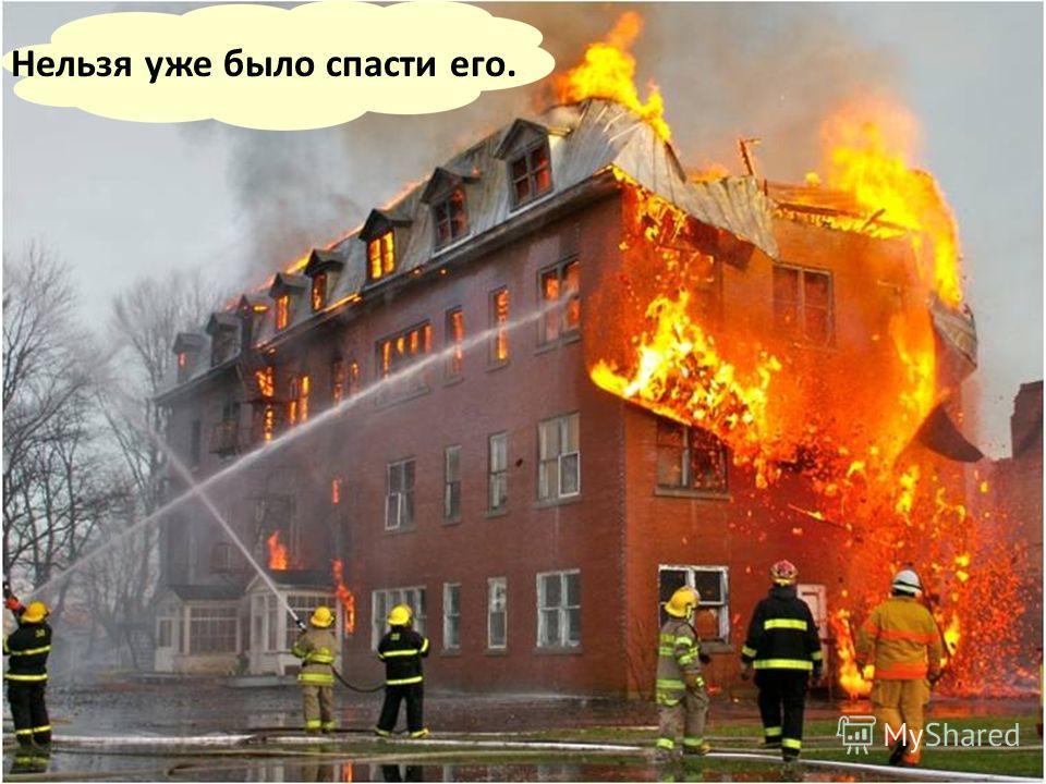 Скорее всего, он, испугавшись пламени и дыма, вместо того чтобы спуститься вниз, взобрался по лестнице на самый верх.