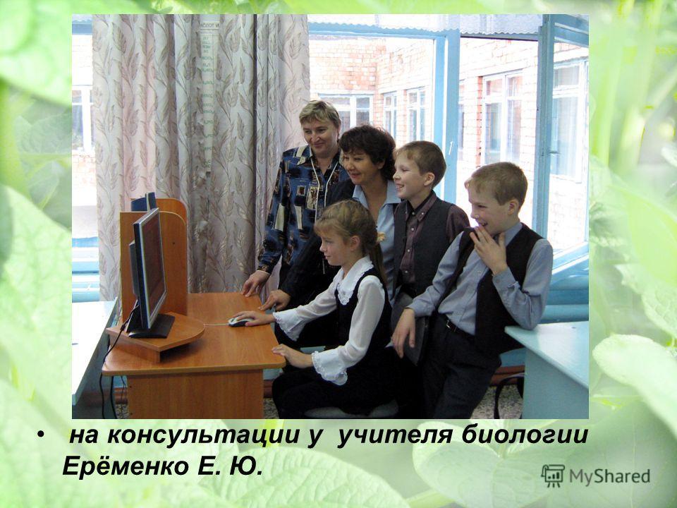 на консультации у учителя биологии Ерёменко Е. Ю.