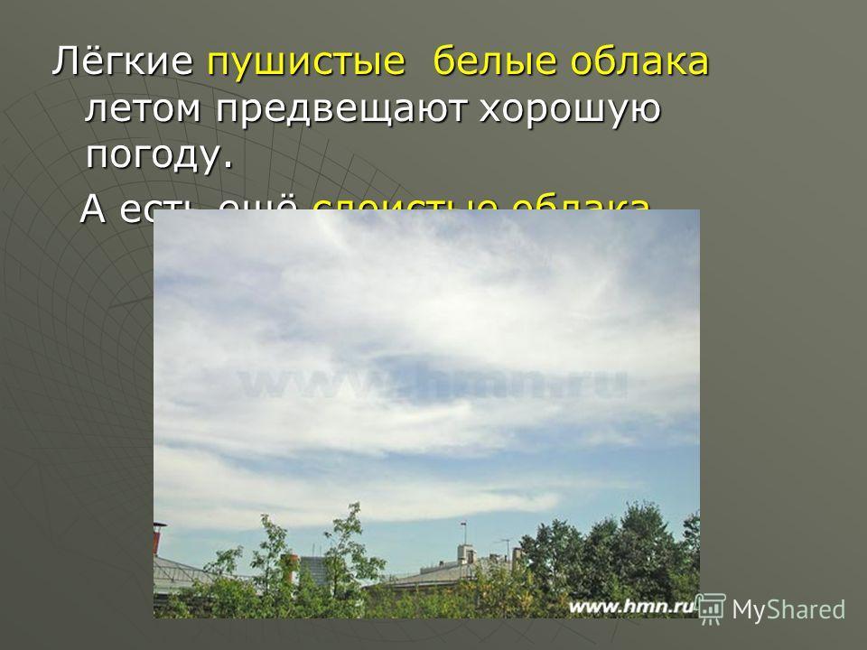 Лёгкие пушистые белые облака летом предвещают хорошую погоду. А есть ещё слоистые облака. А есть ещё слоистые облака.