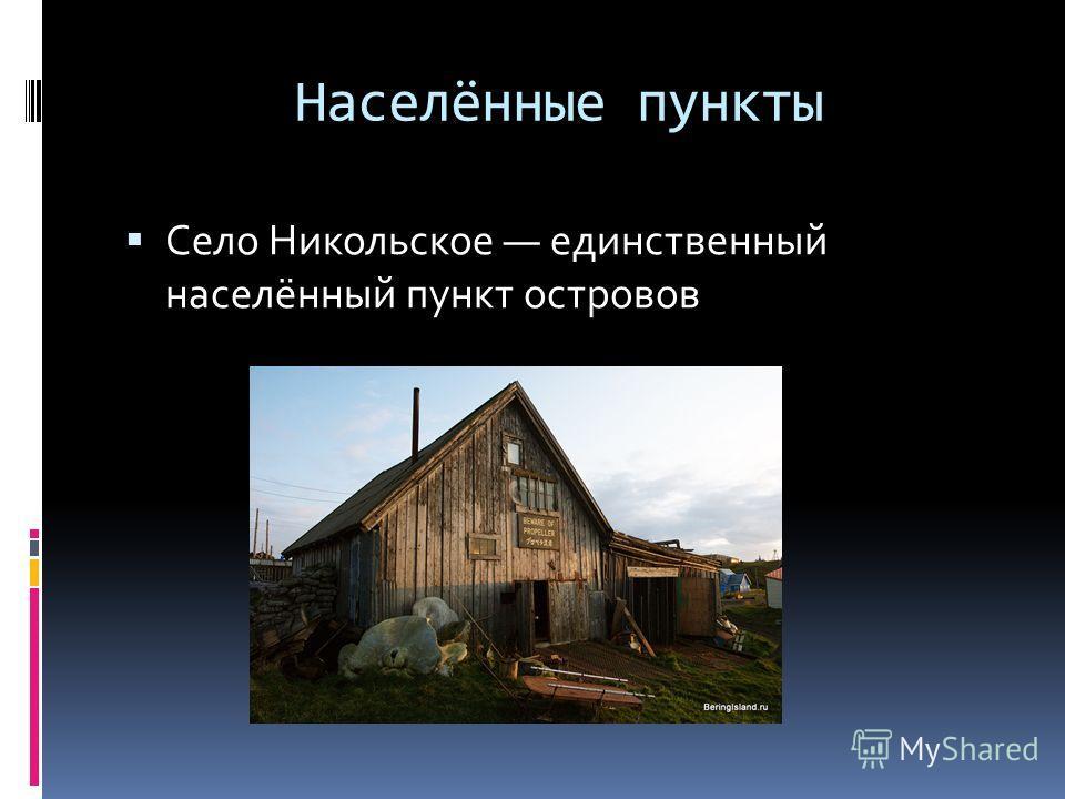 Населённые пункты Село Никольское единственный населённый пункт островов