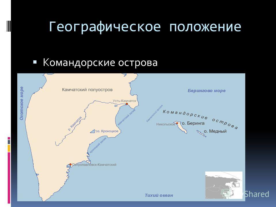 Географическое положение Командорские острова