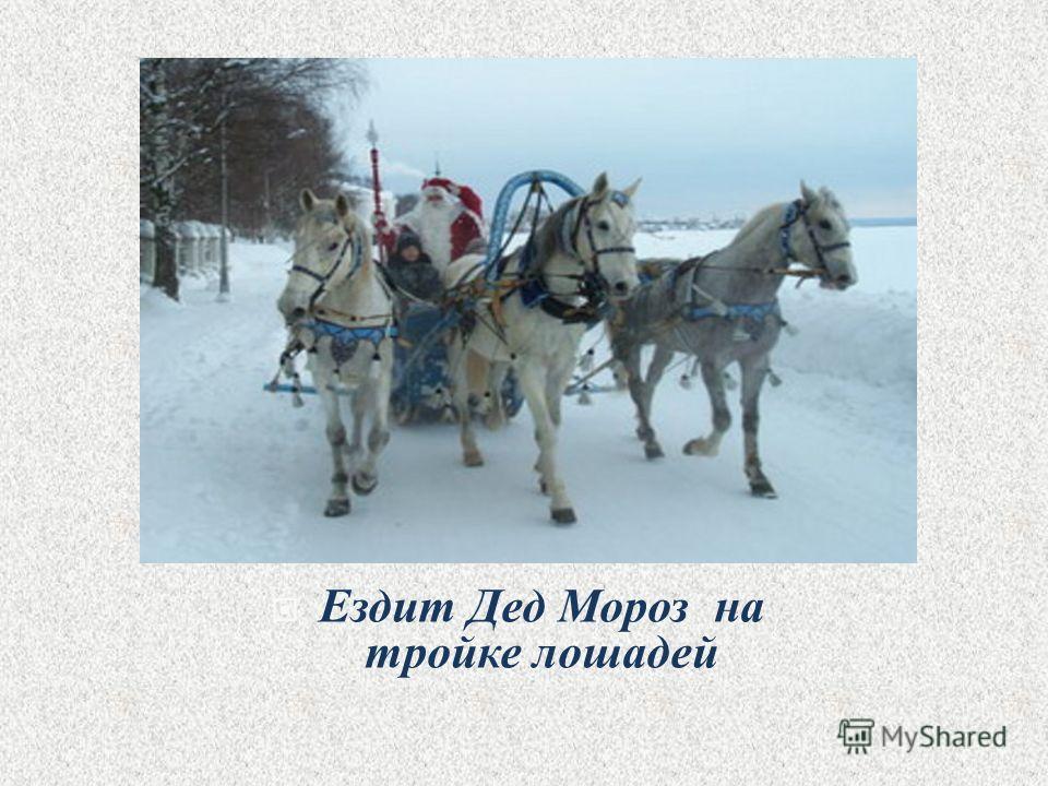 Ездит Дед Мороз на тройке лошадей