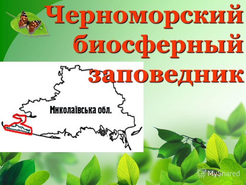 Черноморский биосферный заповедник