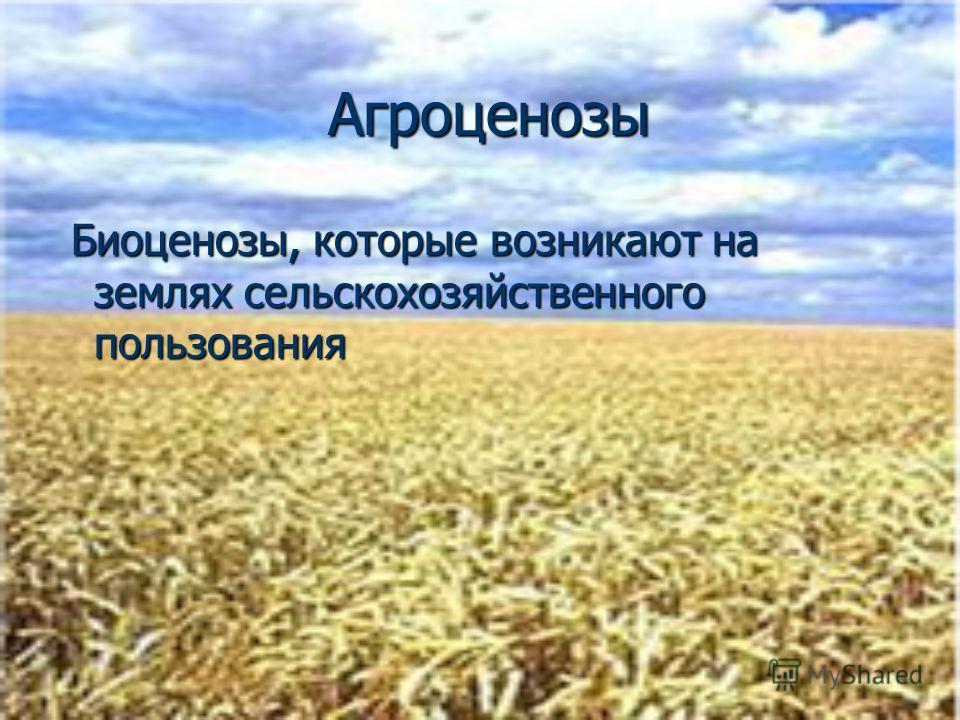 Агроценозы Агроценозы Биоценозы, которые возникают на землях сельскохозяйственного пользования Биоценозы, которые возникают на землях сельскохозяйственного пользования