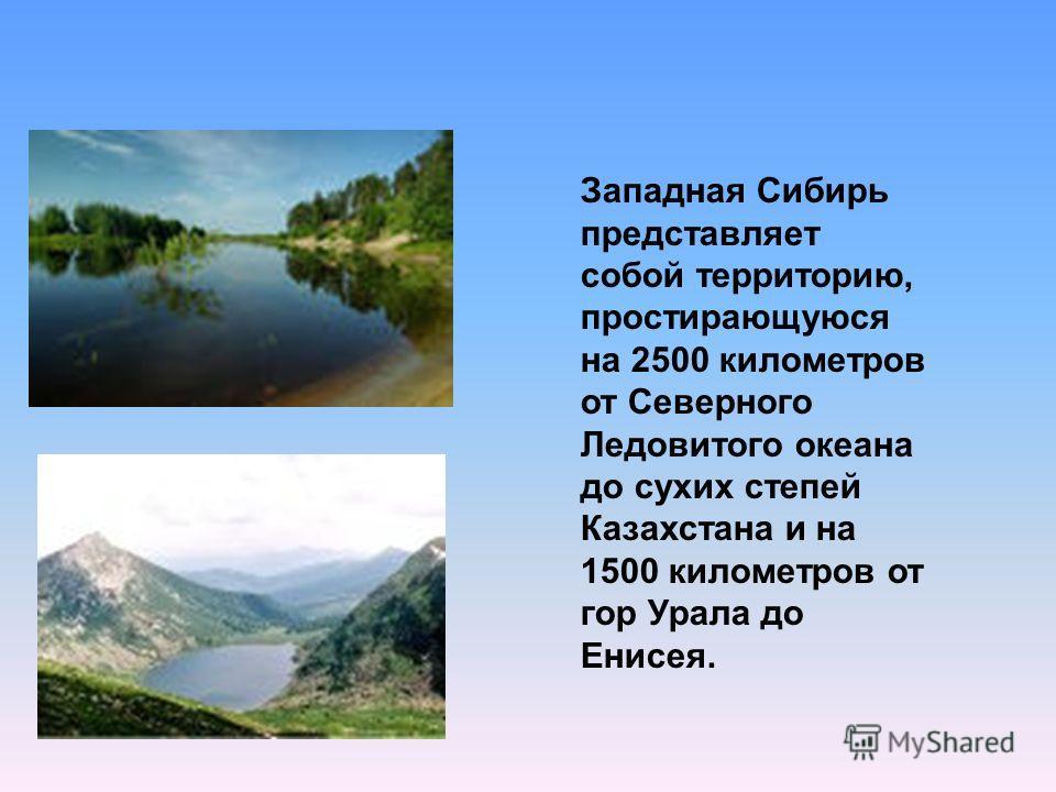 Западная Сибирь представляет собой территорию, простирающуюся на 2500 километров от Северного Ледовитого океана до сухих степей Казахстана и на 1500 километров от гор Урала до Енисея.